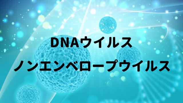 DNAの意味や定義 Weblio辞書